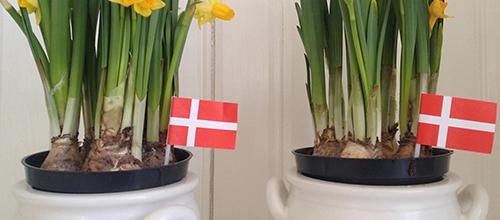 Danish flag…